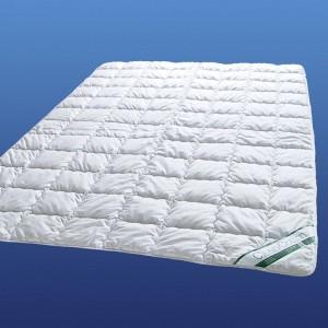 Baumwolle Sommerdecke Clean Cotton von Badenia