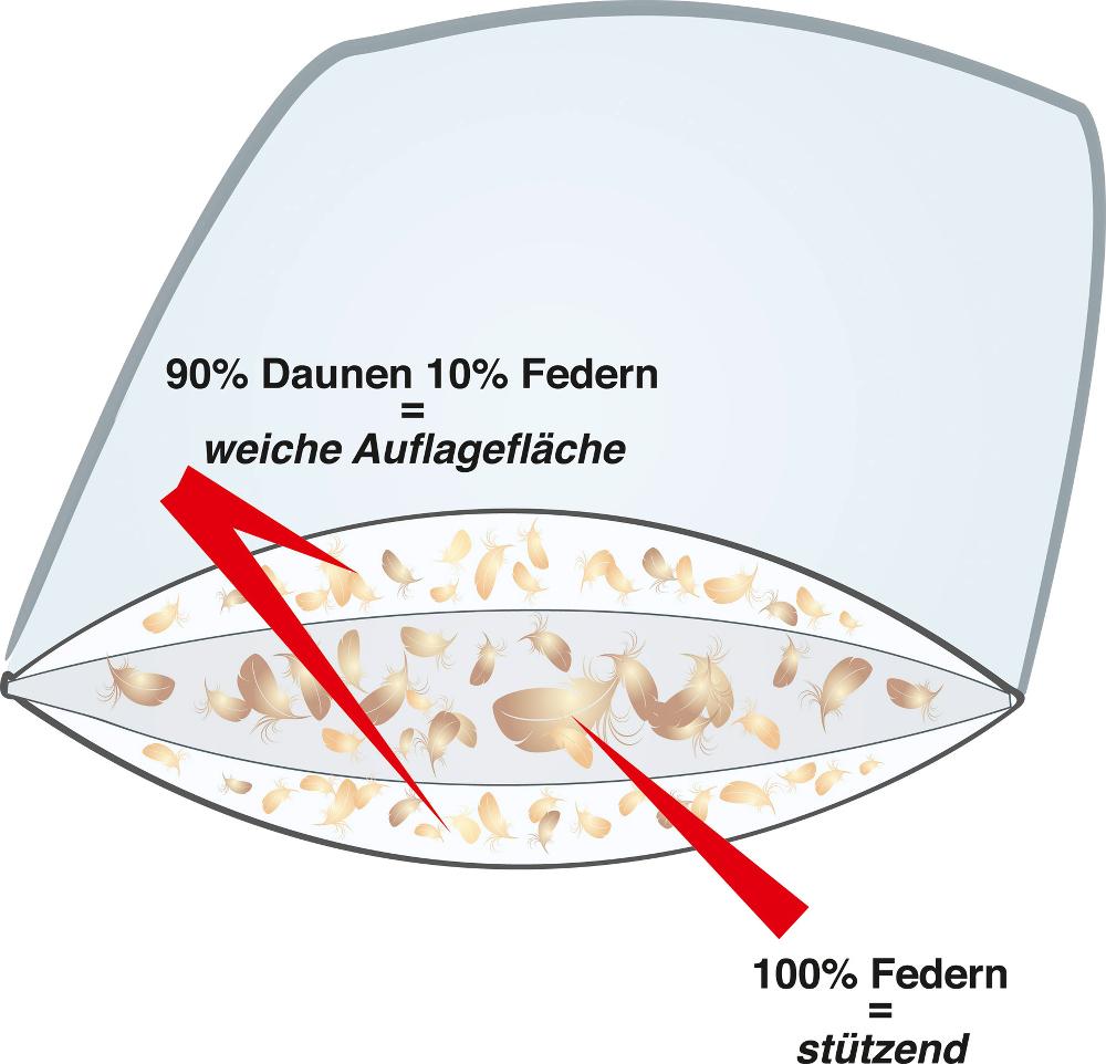 3-Kammer Daunenkissen von Häussling